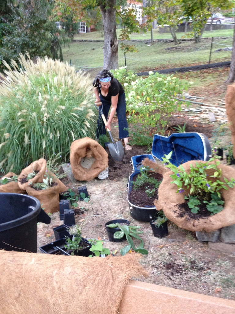 Planting native beds